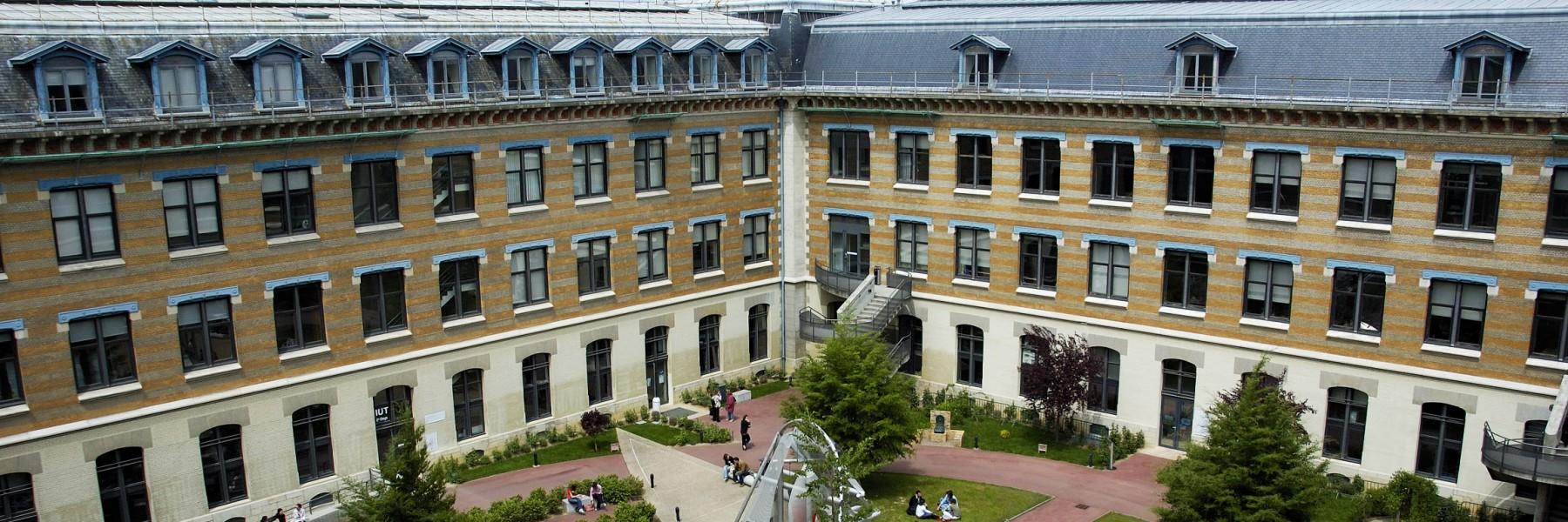 Association du Collège de Droit, Lyon III